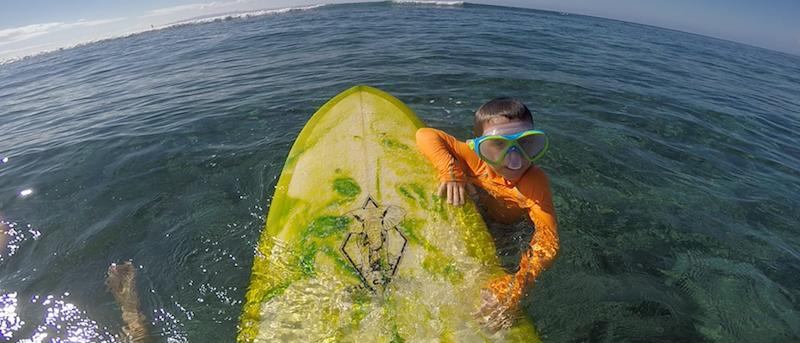 hawaii sunscreen ban news snorkel maui