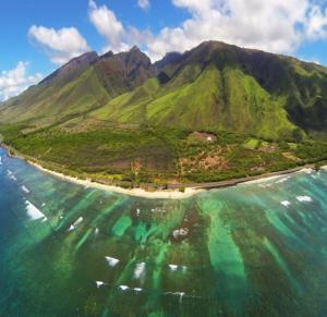Olowalu Coral Reefs