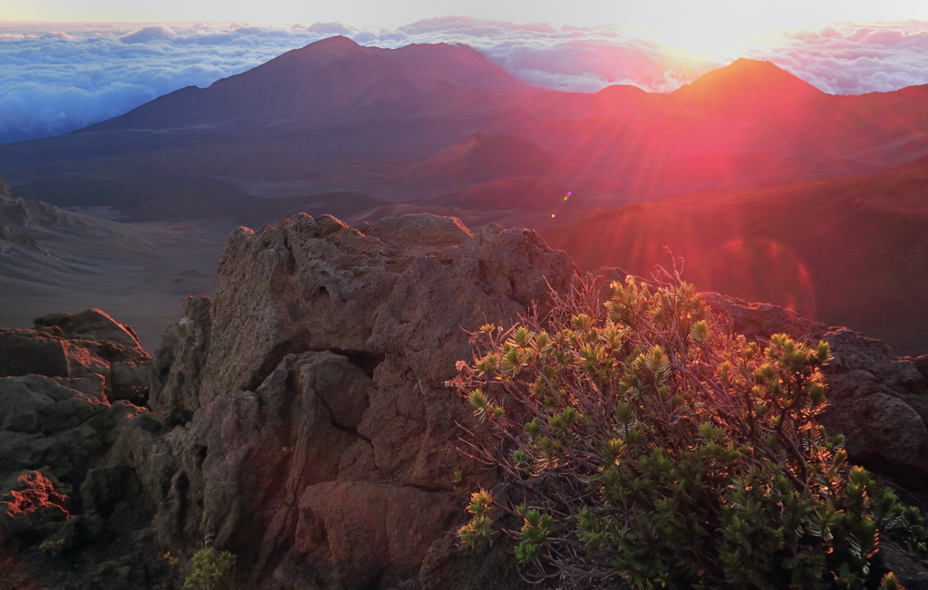 Haleakala Sunrise Tours