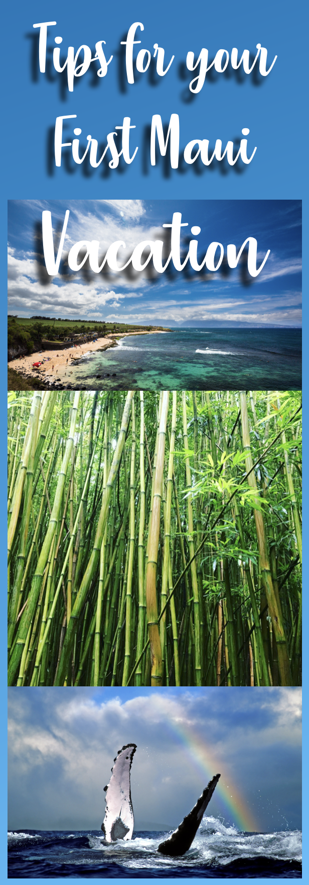Tips for your First Maui Vacation! What to see, what to miss, and what to splurge on!