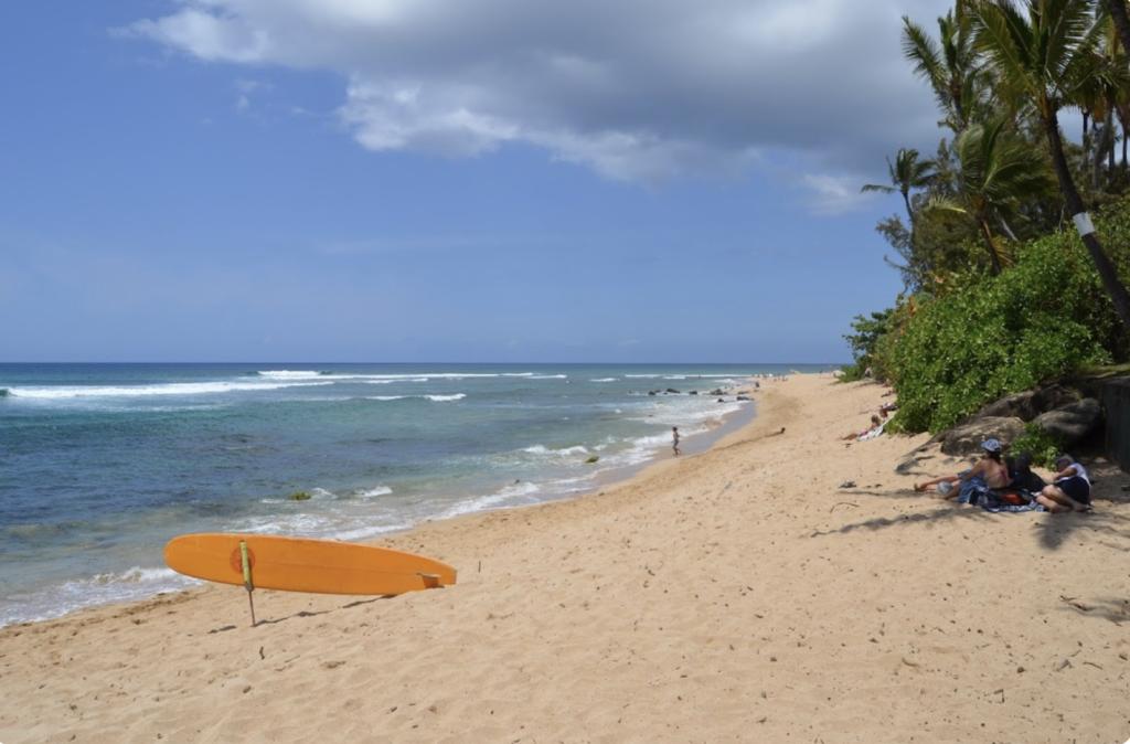 surf chuns reef Oahu